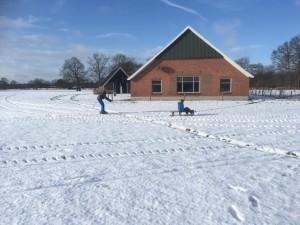 Sneeuw (Medium)